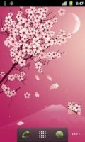 Blooming.Night.Pro.Live.Wallpaper.v1.1.4-AnDrOiD