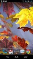 Maple.Leaf.Live.Wallpaper.v1.3.-AnDrOiD